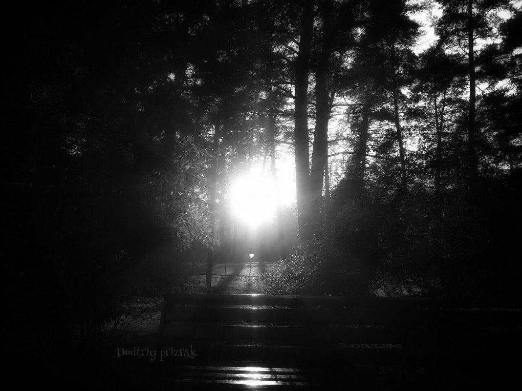 Свет солнца .... - Дмитрий Призрак
