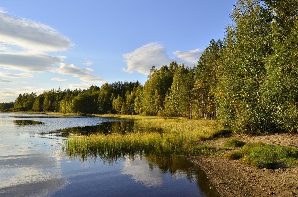 Летняя пора на озере Вахерярви. - Владимир Ильич Батарин