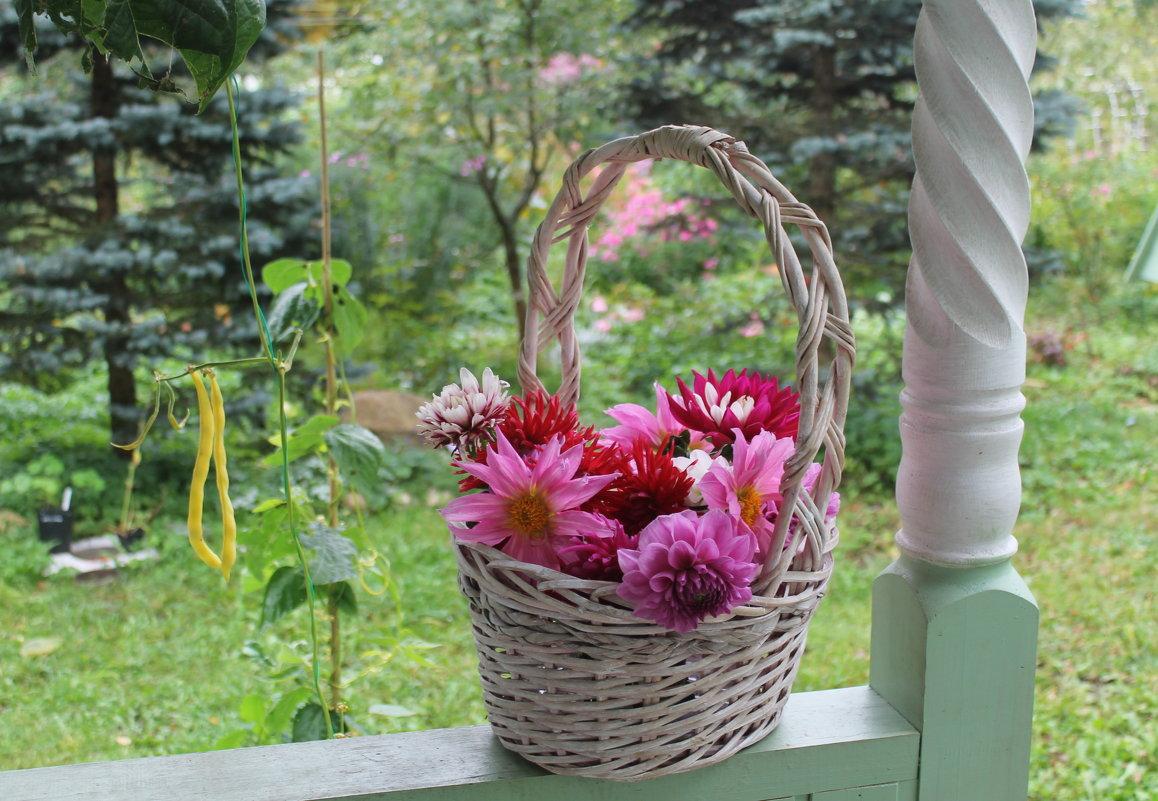 Цветы уходящего лета - Наталья Березко