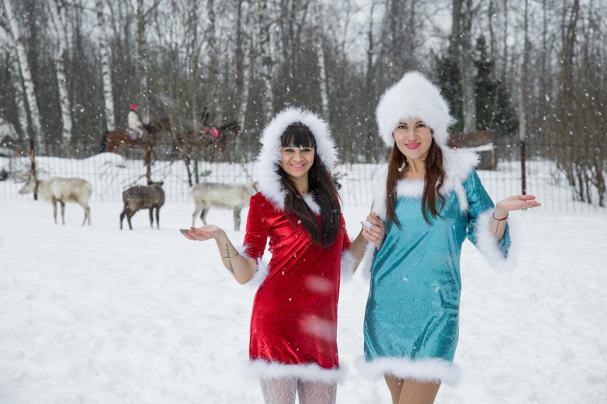 Ждём Деда Мороза - Андрей Куприянов