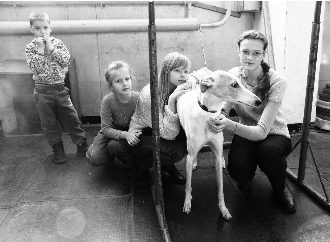 дети с собакой - Владимир Бурдин