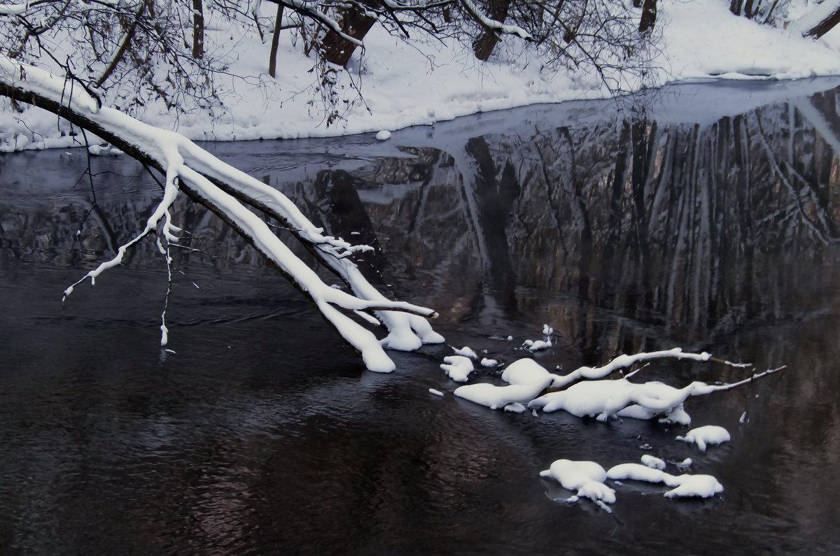 Зимний пейзаж на Иже - Владимир Максимов
