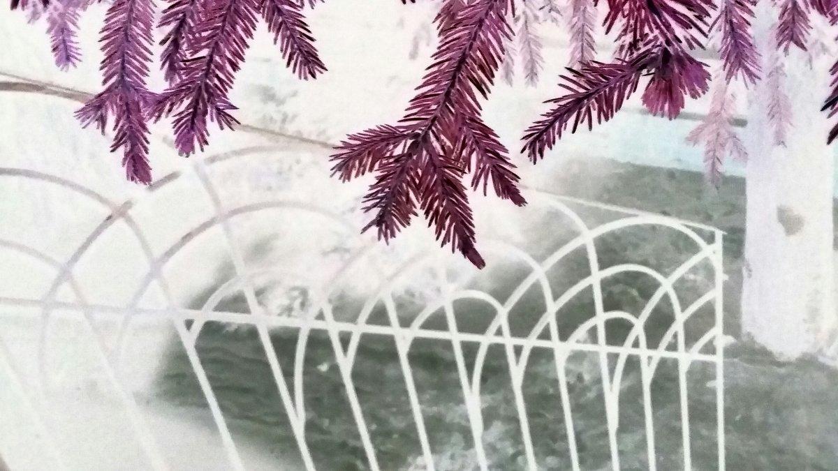Зимняя сказка - Виктория Нефедова