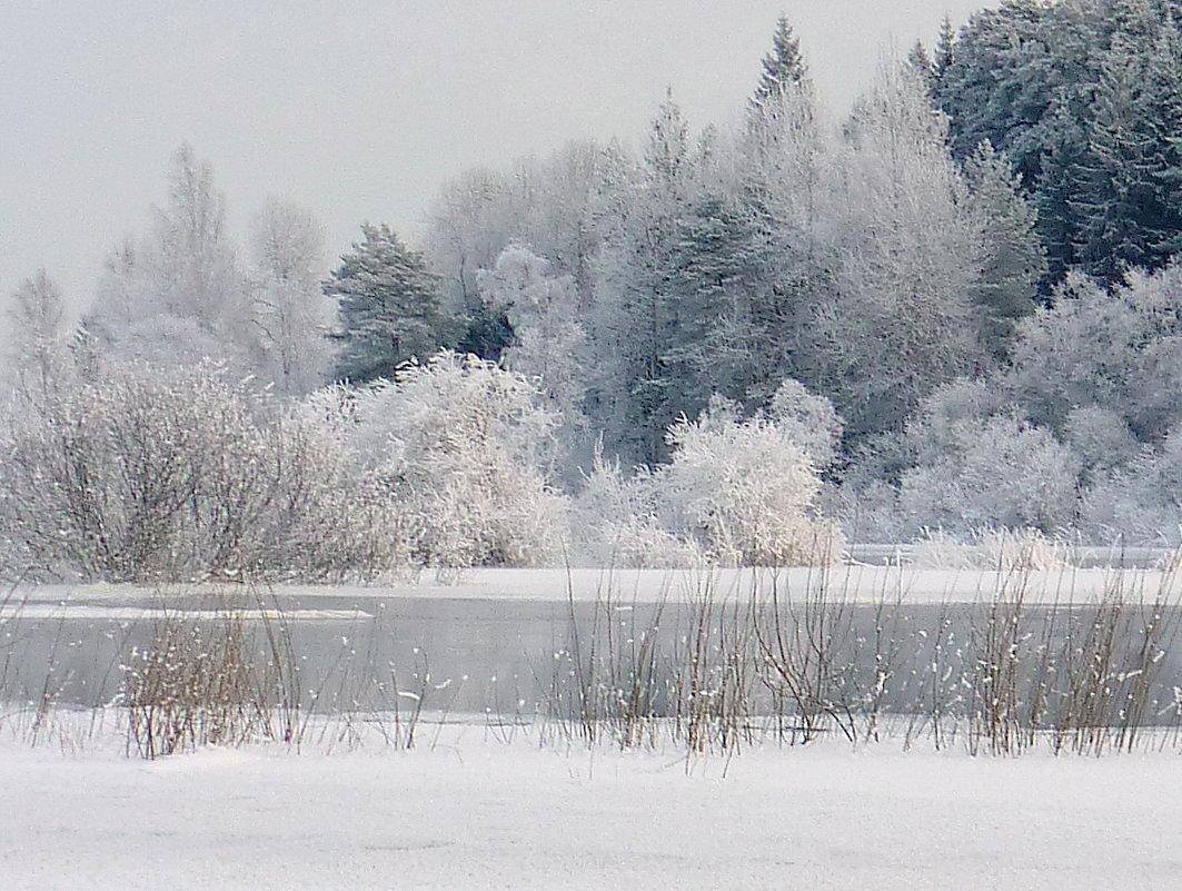 Зимний сон - Павлова Татьяна Павлова
