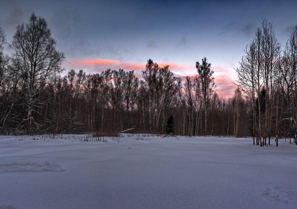 Закат в подмосковном лесу - Владимир Брагилевский