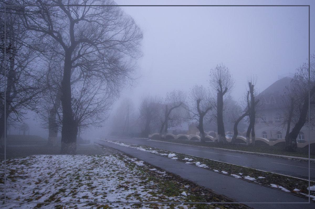 В тумане - Дубовцев Евгений