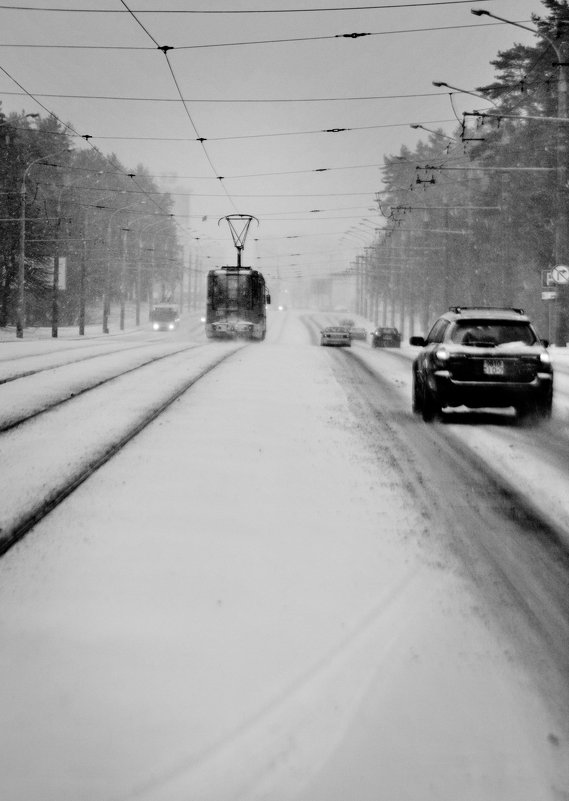 трамвайчик - сергей швед