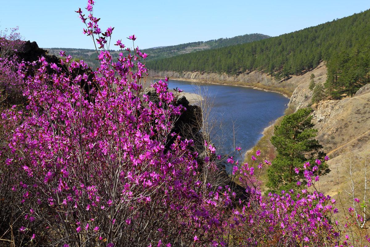 Вид на реку Ингода со скал урочища Сухотино в г.Чите. - Александр Киргизов