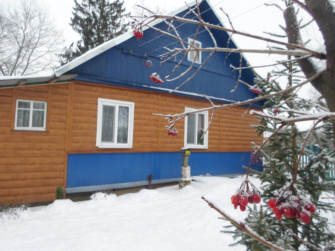 Декабрь в деревне - BoxerMak Mak
