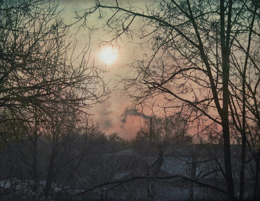 Солнце зимнего дня - Елена