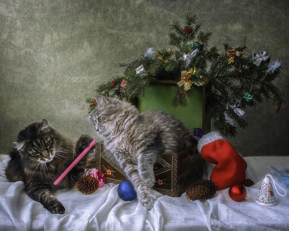 Генеральная репетиция Нового года - Ирина Приходько