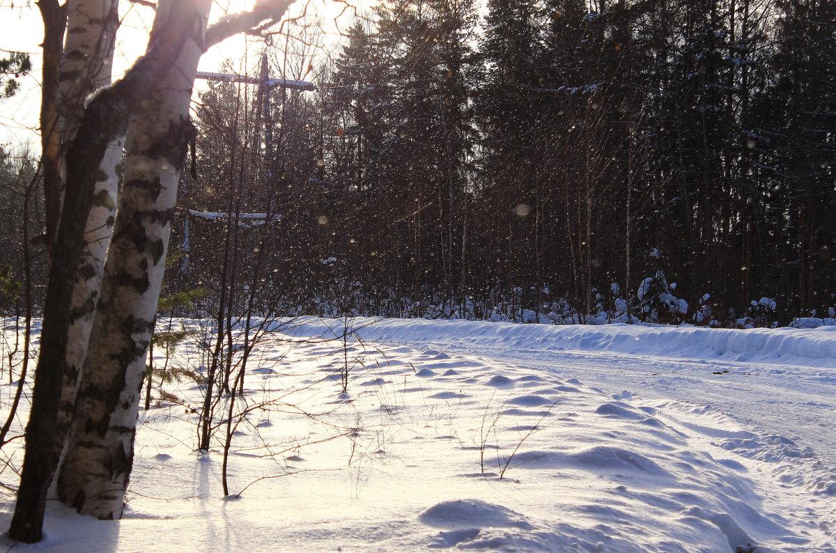 Снег кружится, летает, летает - Татьяна Ломтева