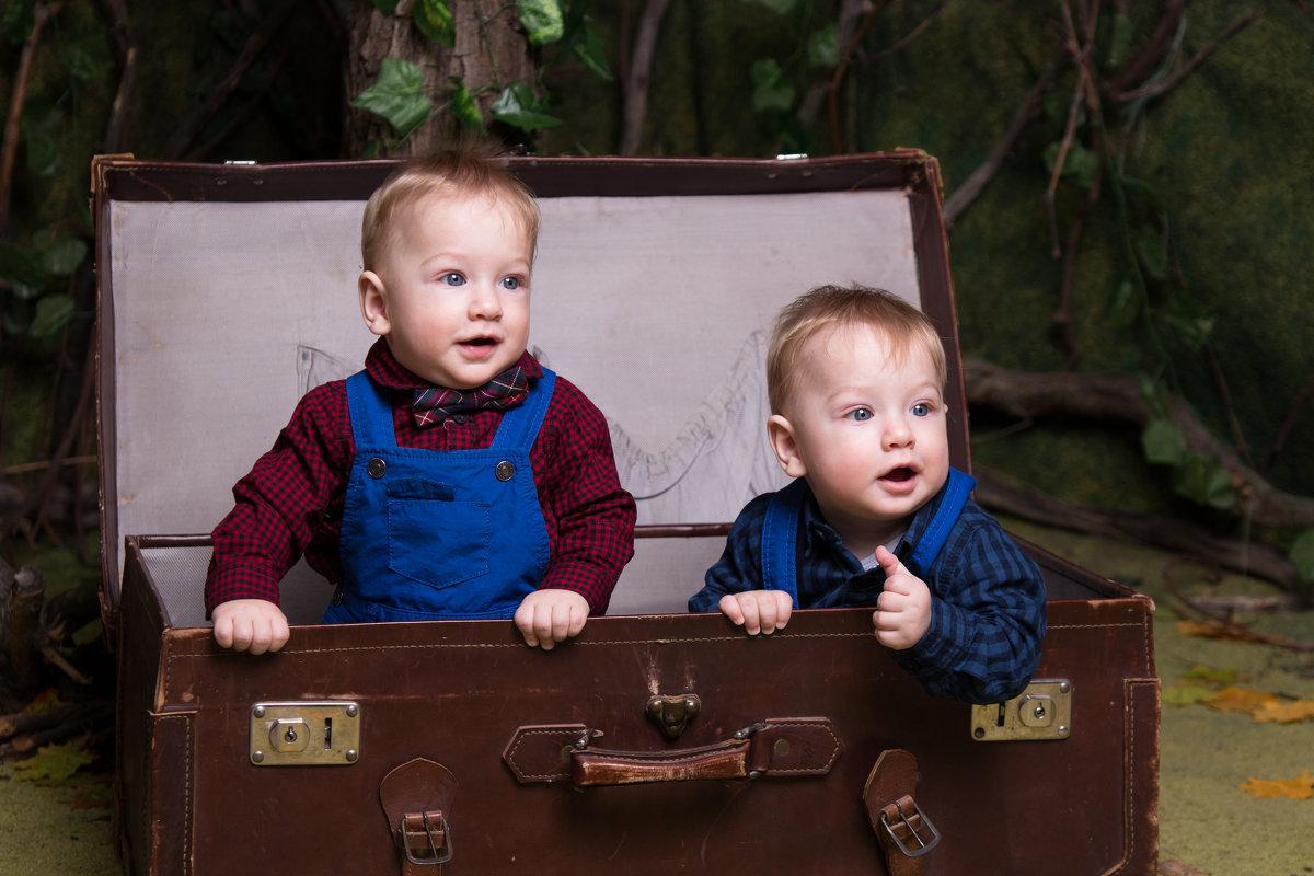 Двойняшки в чемодане - Valentina Zaytseva