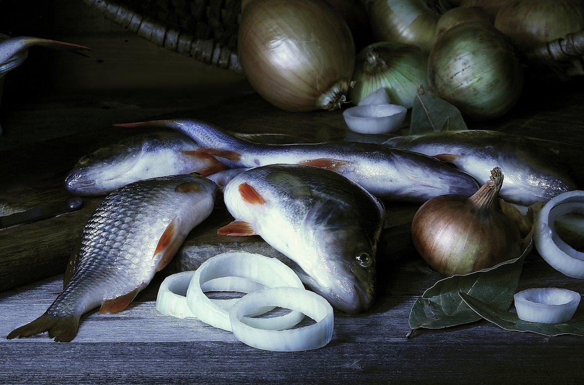 Улов. И рыбка неплохая - 35 см. длиной...! - Валерия  Полещикова