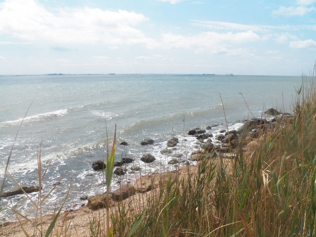 Там, где сходятся два моря - Регина Пупач