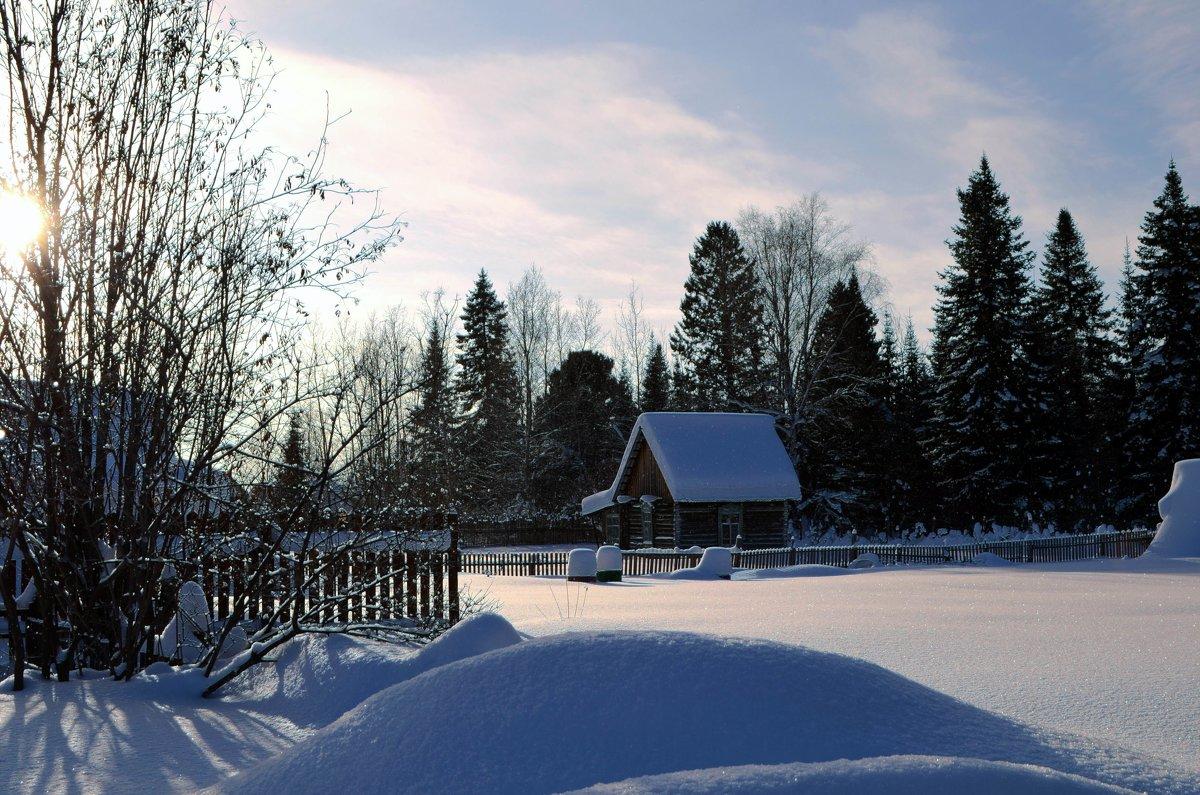 Зимний день - Вера Андреева