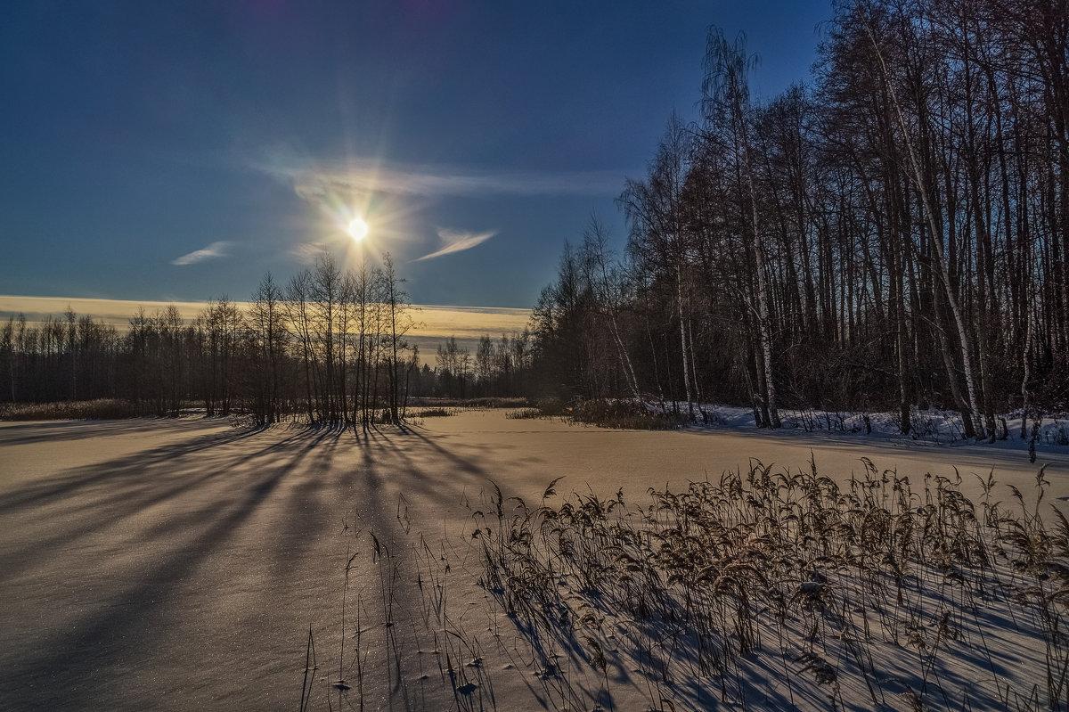 Мороз и Солнце - Андрей Дворников
