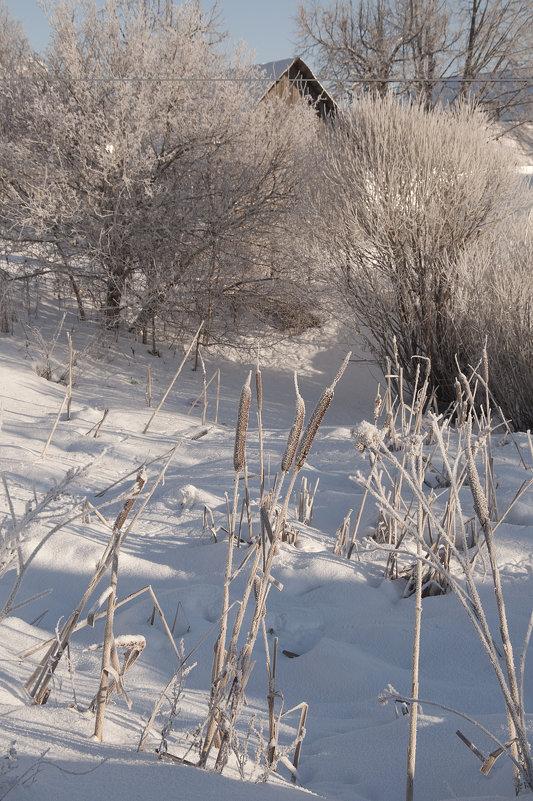 Замерзший пруд - Ольга Осовская