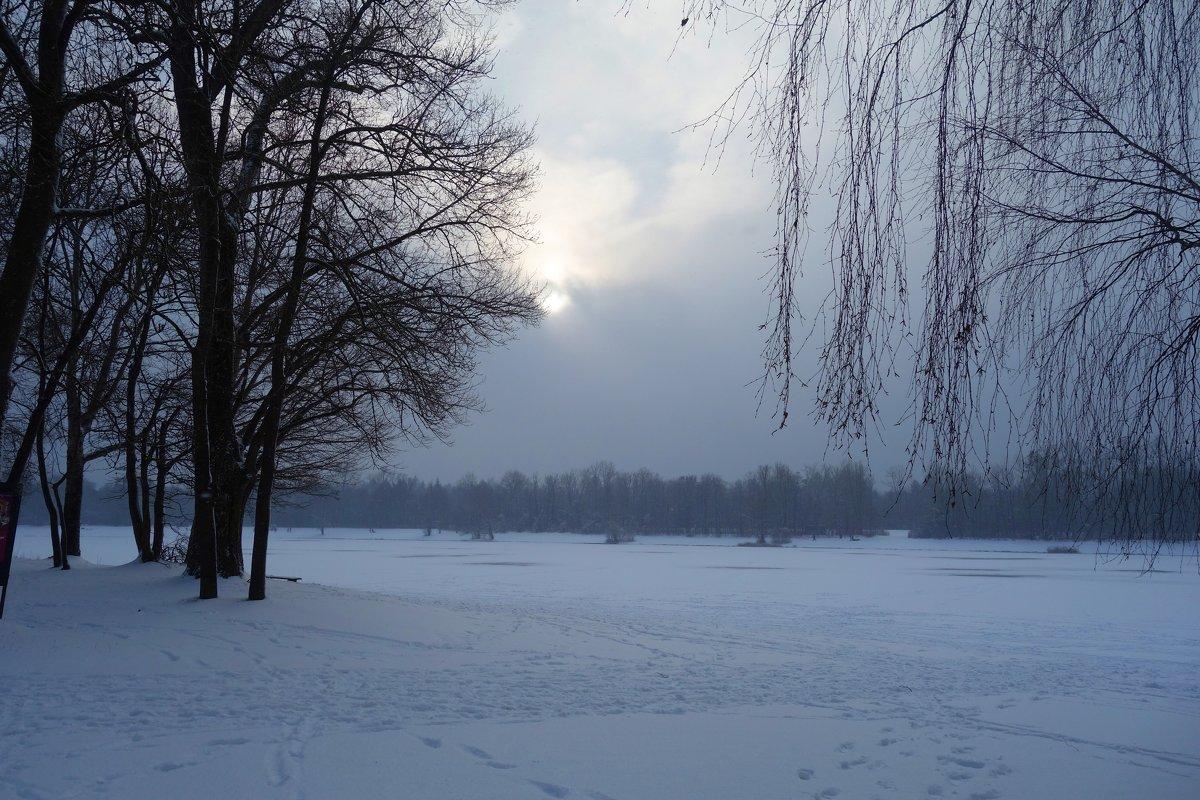 И к нам пришла зима... - Galina Dzubina