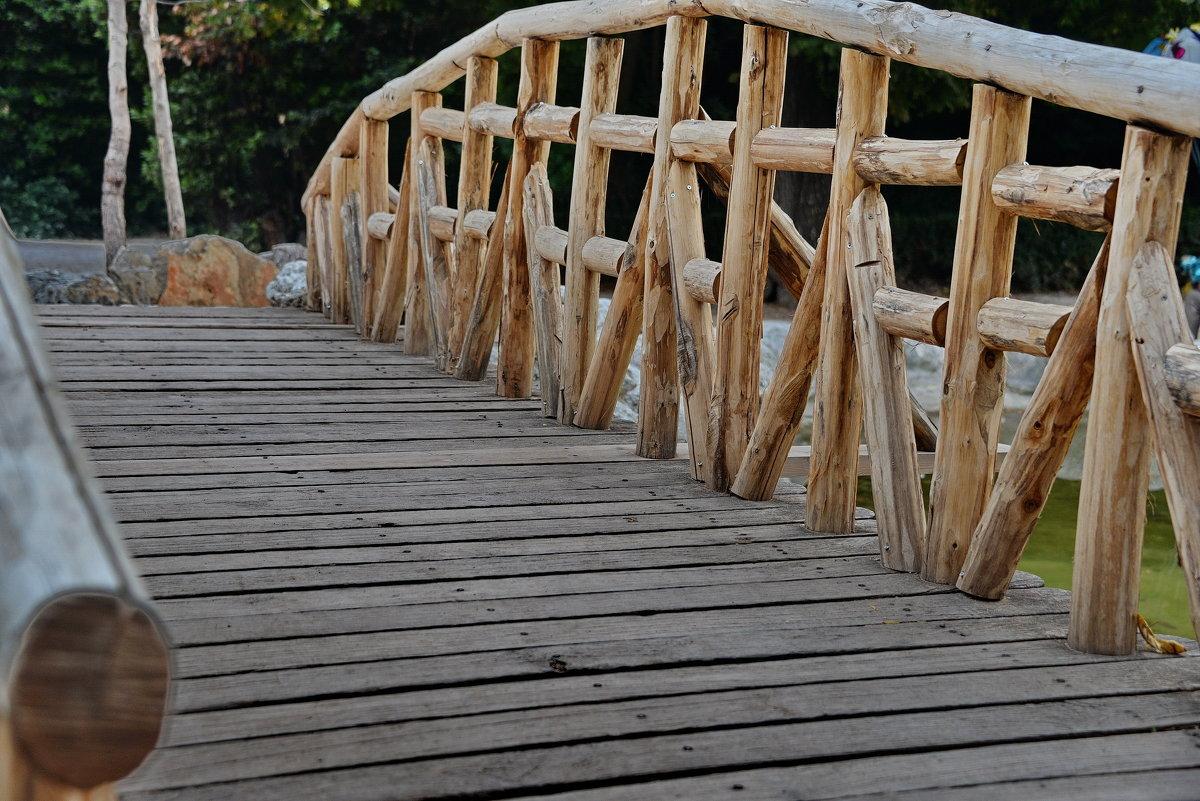 Мостик через пруд, Национальный парк в Афинах - Владимир Брагилевский