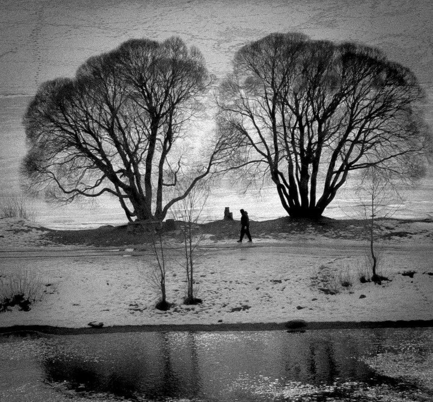 черно-белая зима - Евгения Кирильченко