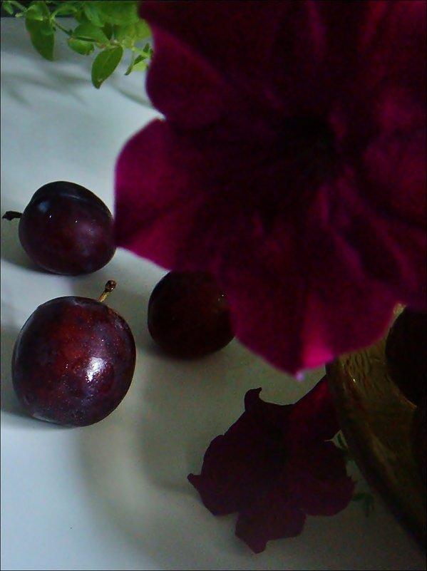 Этюд в лиловых тонах - Нина Корешкова