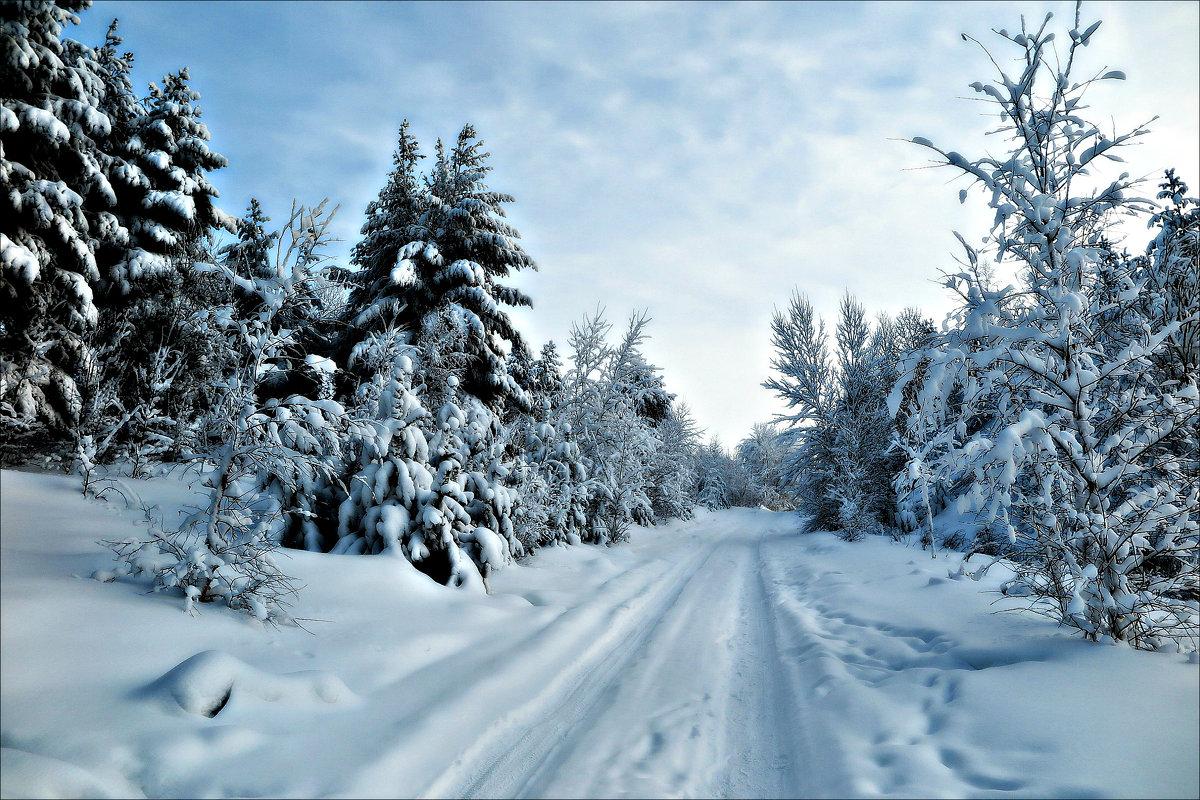 Зимняя дорога - Leonid Rutov