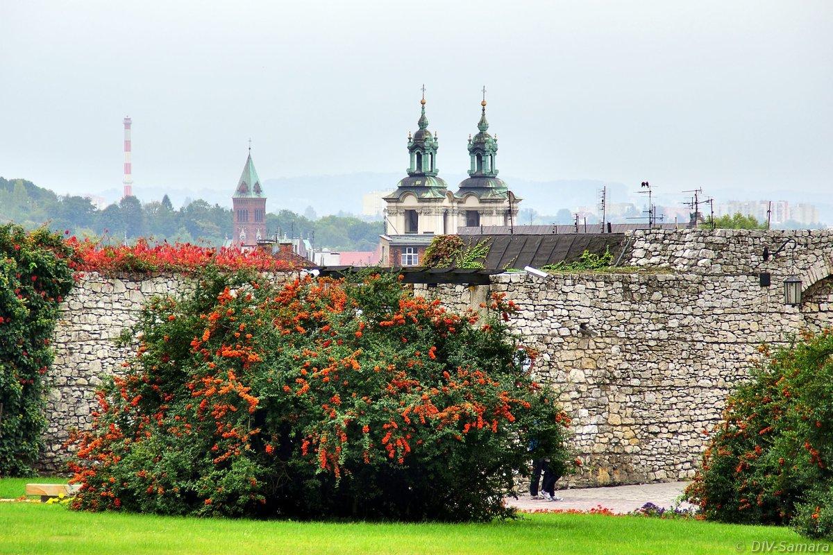 В Вавельском замке в Кракове - Денис Кораблёв