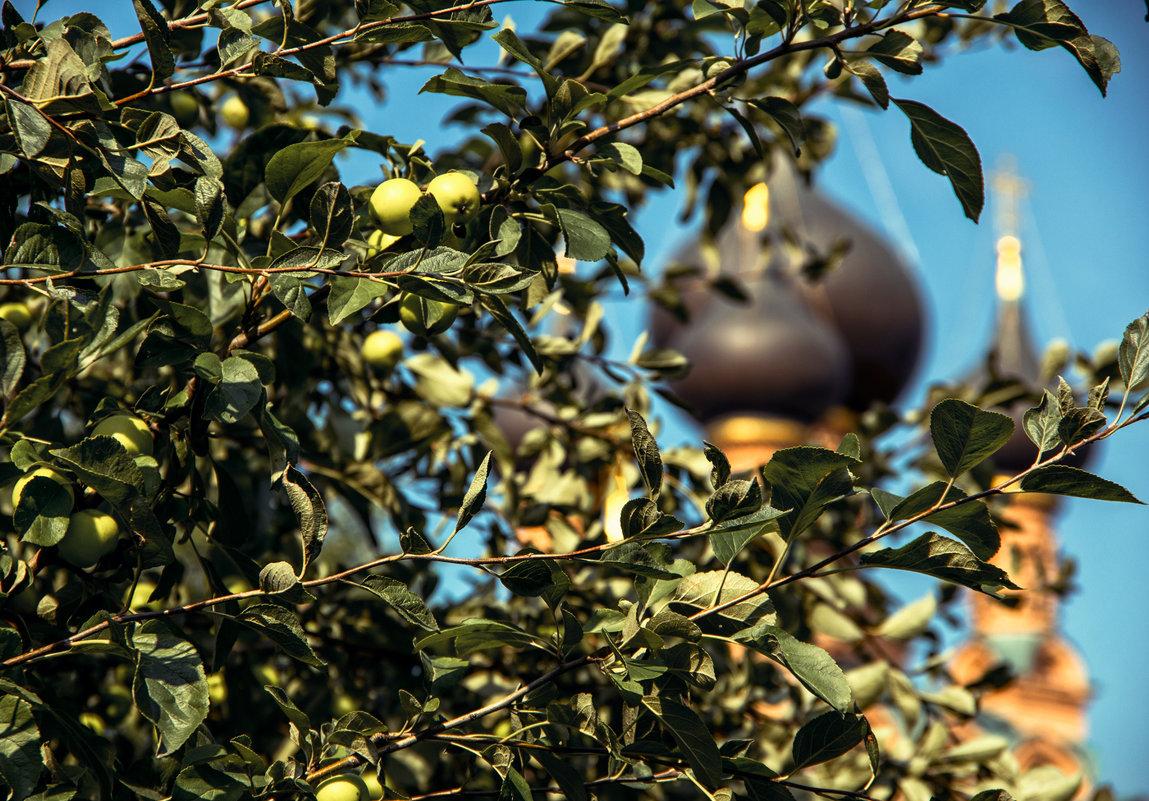 Яблочный спас в Останкино - Нина