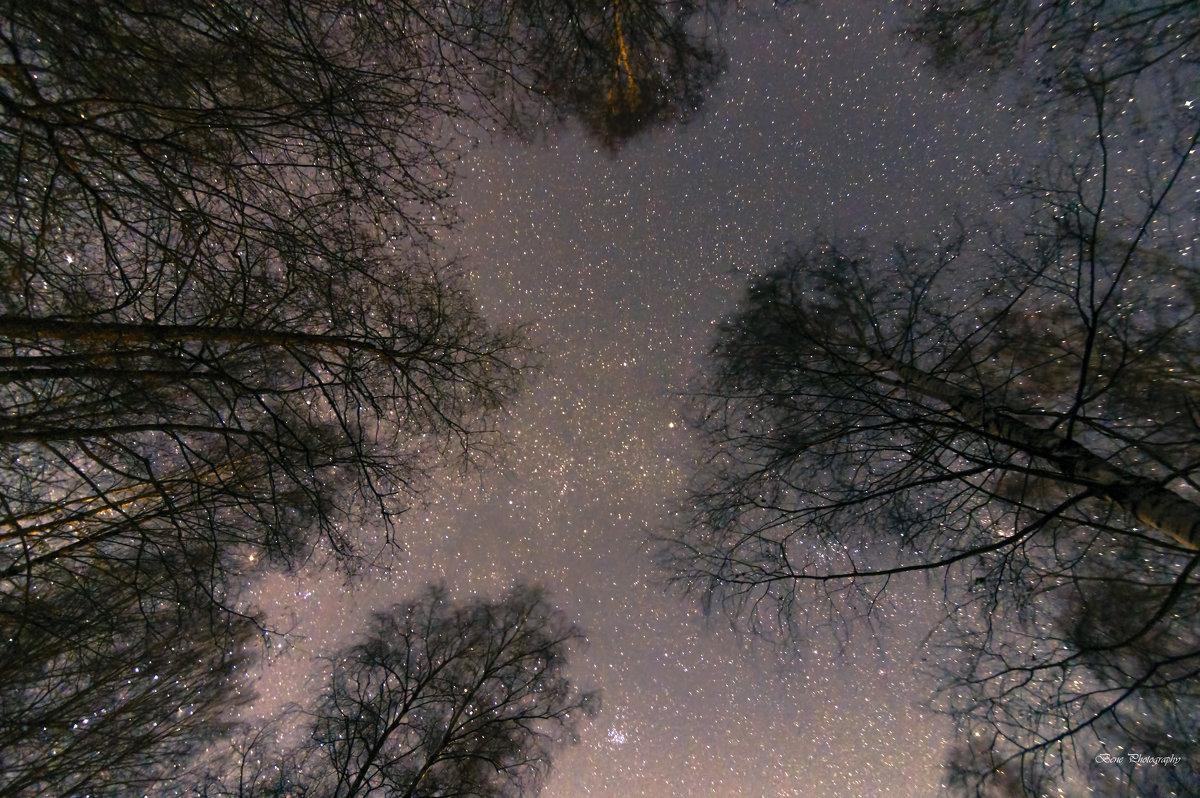 Очи небесные ... - Ramunas Einoris