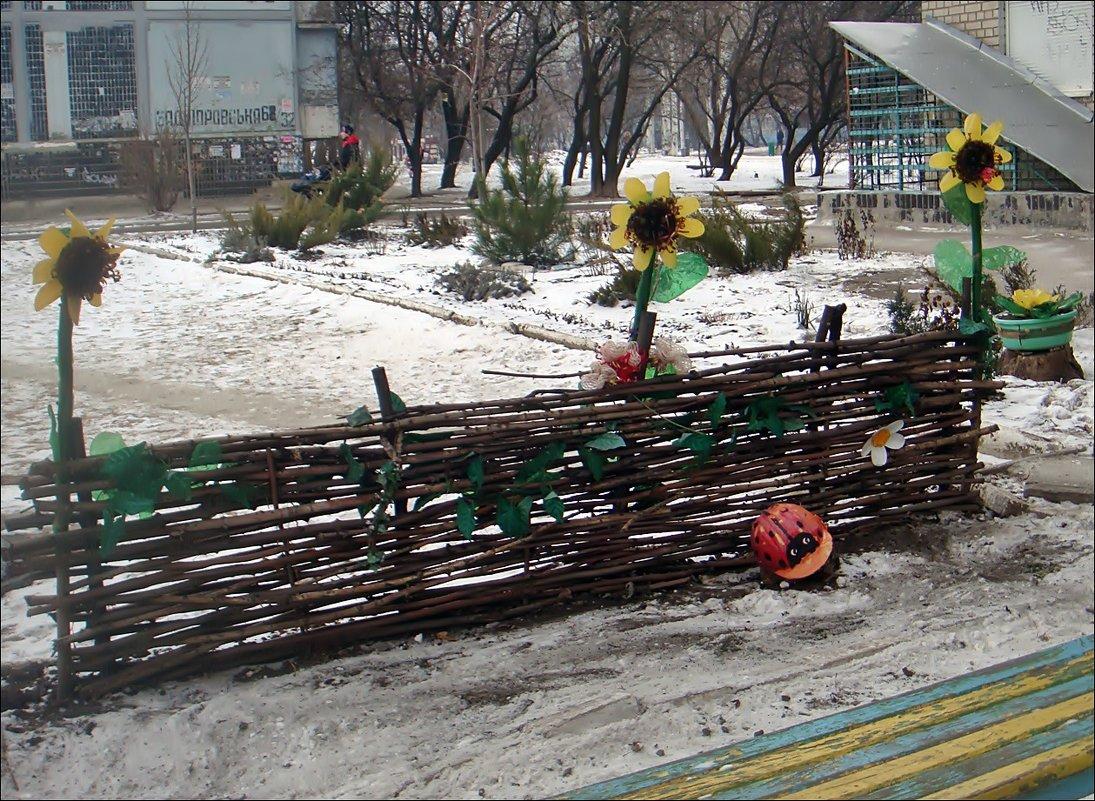 Тин і соняшники - це Україна! - Нина Корешкова