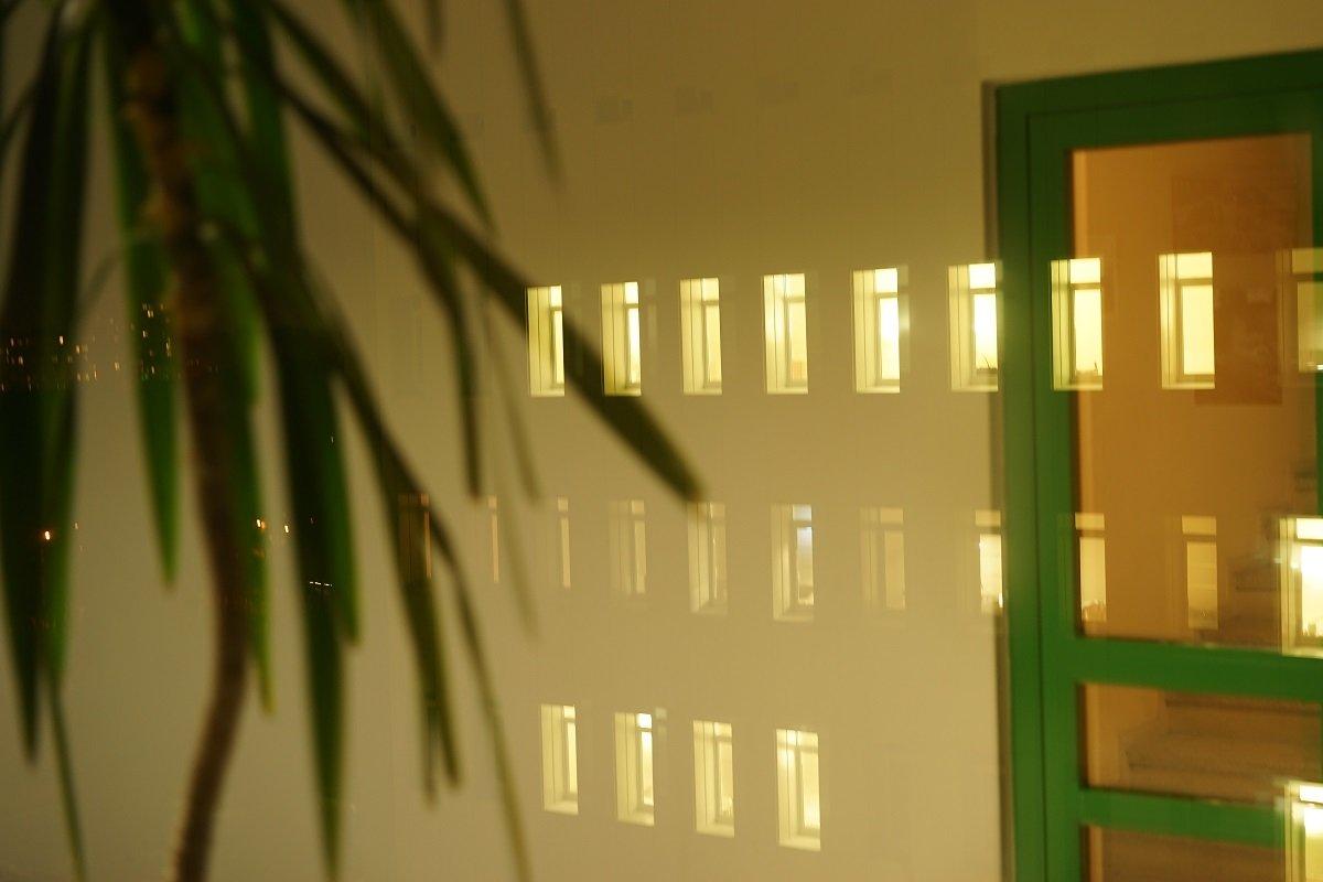 Green - Sony 2 Sony 2