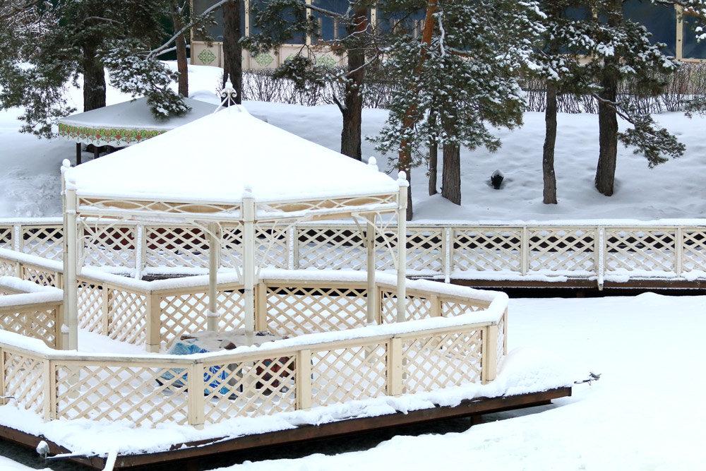 Зимой в парке - Сергей Кухаренко