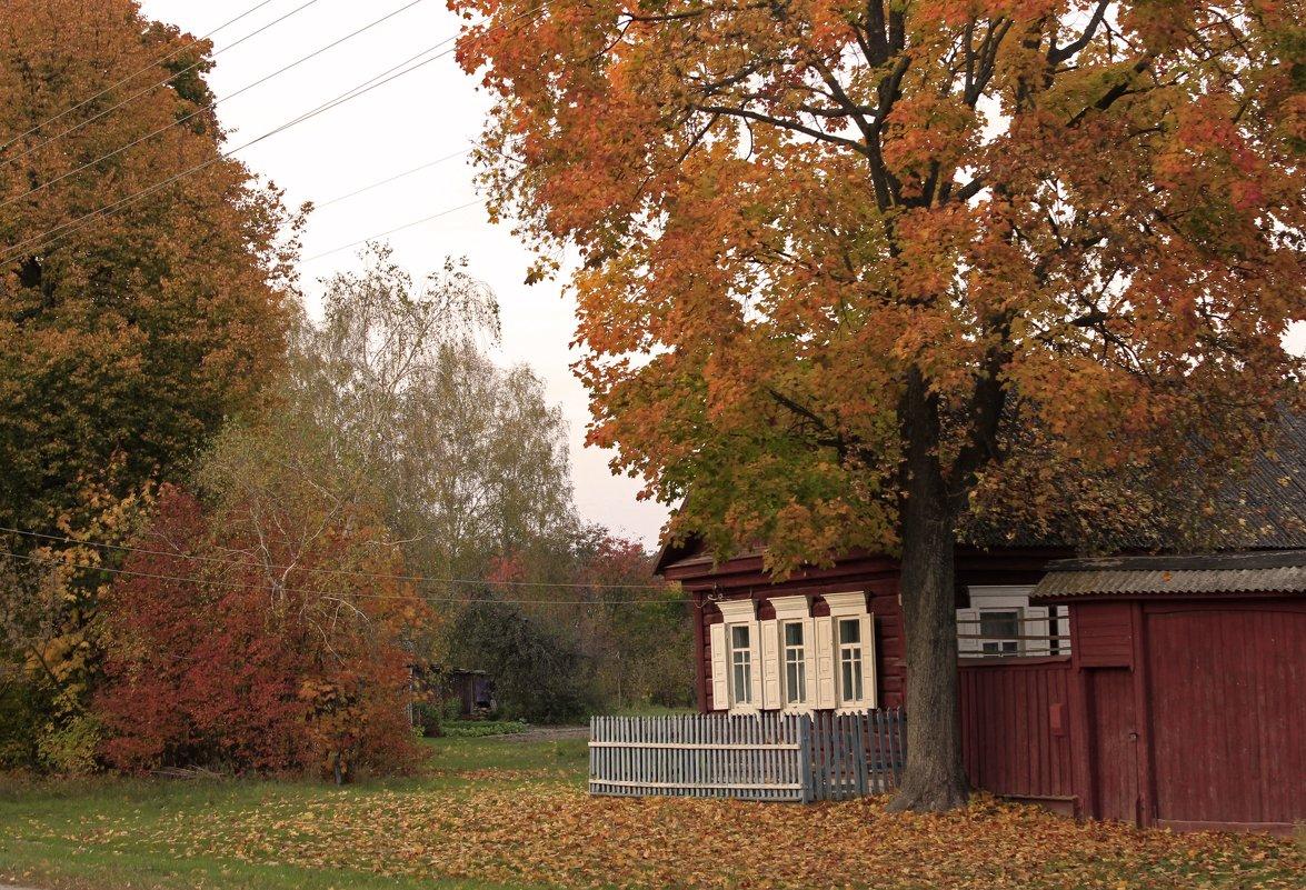 осень в деревне - оксана