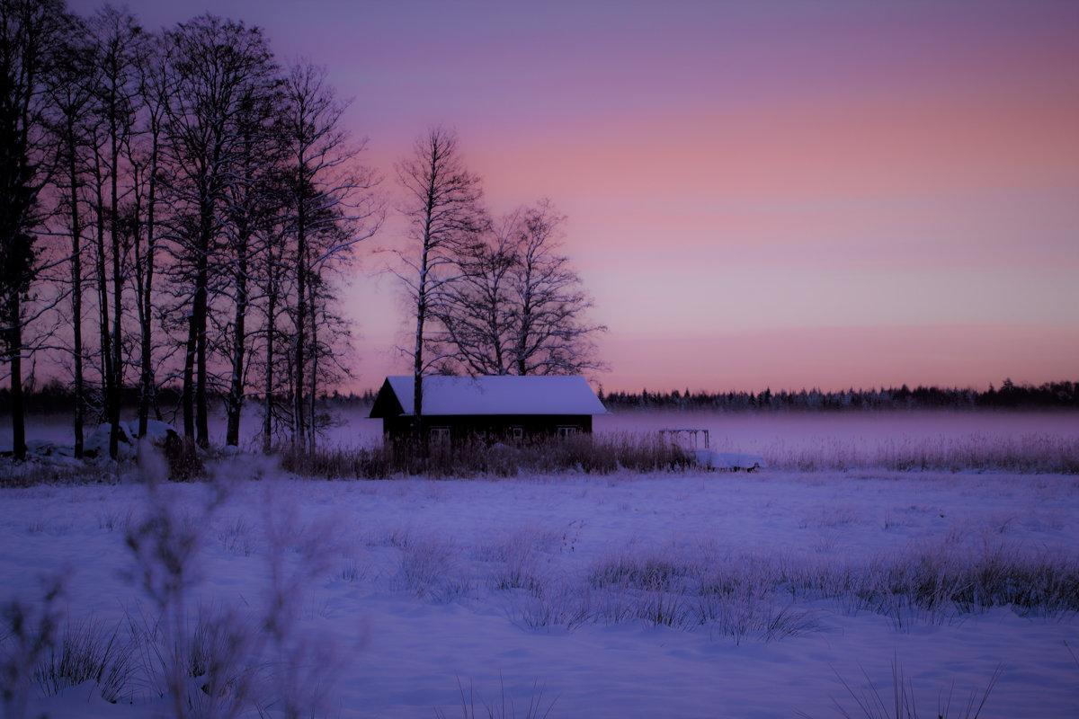 зимним утром - liudmila drake