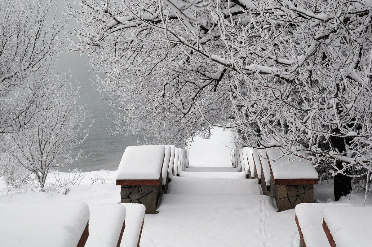 Первый снег - Vladimir Lisunov