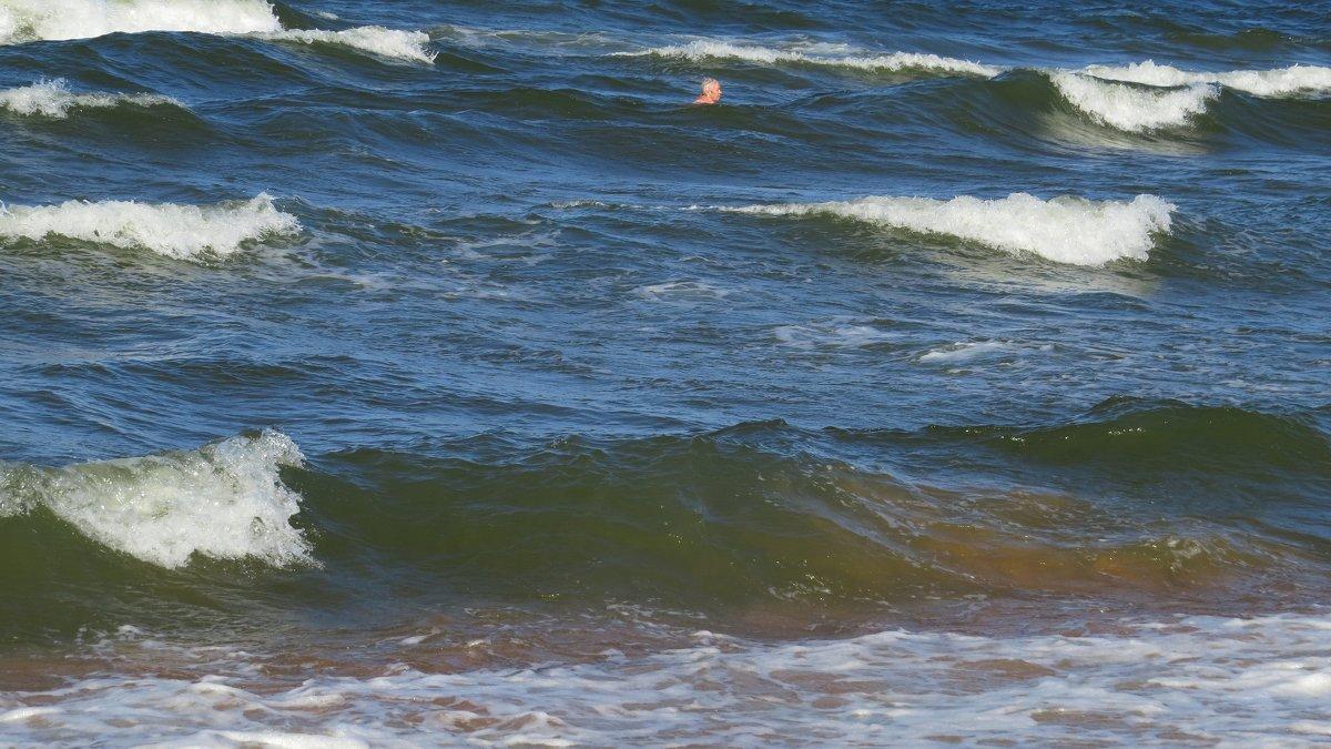 Море - Вера Щукина