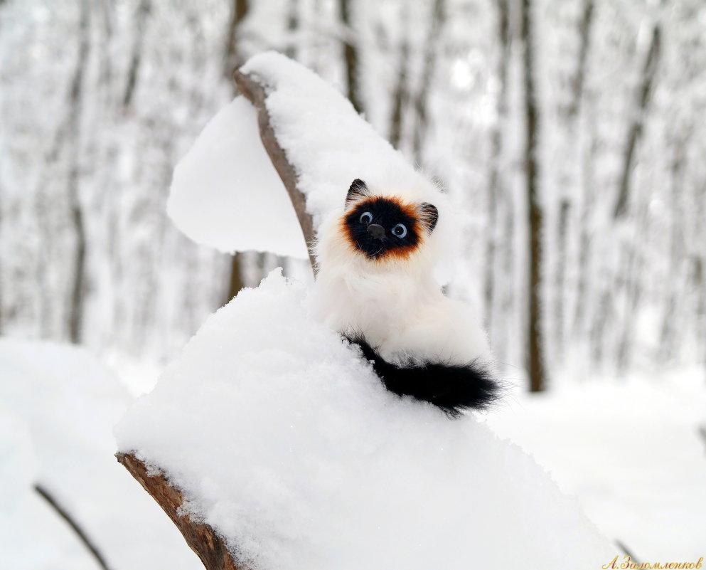 Кого только не встретишь в зимнем лесу:) - Андрей Заломленков
