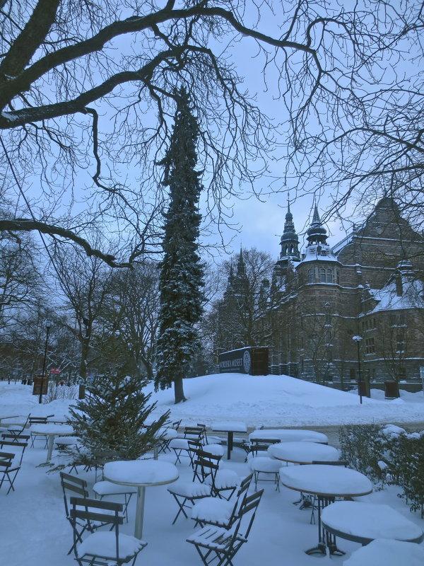В снежном одеянии. Стокгольм - Елена