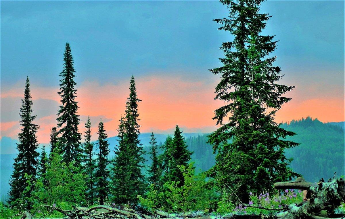 Вечер в горах - Сергей Чиняев
