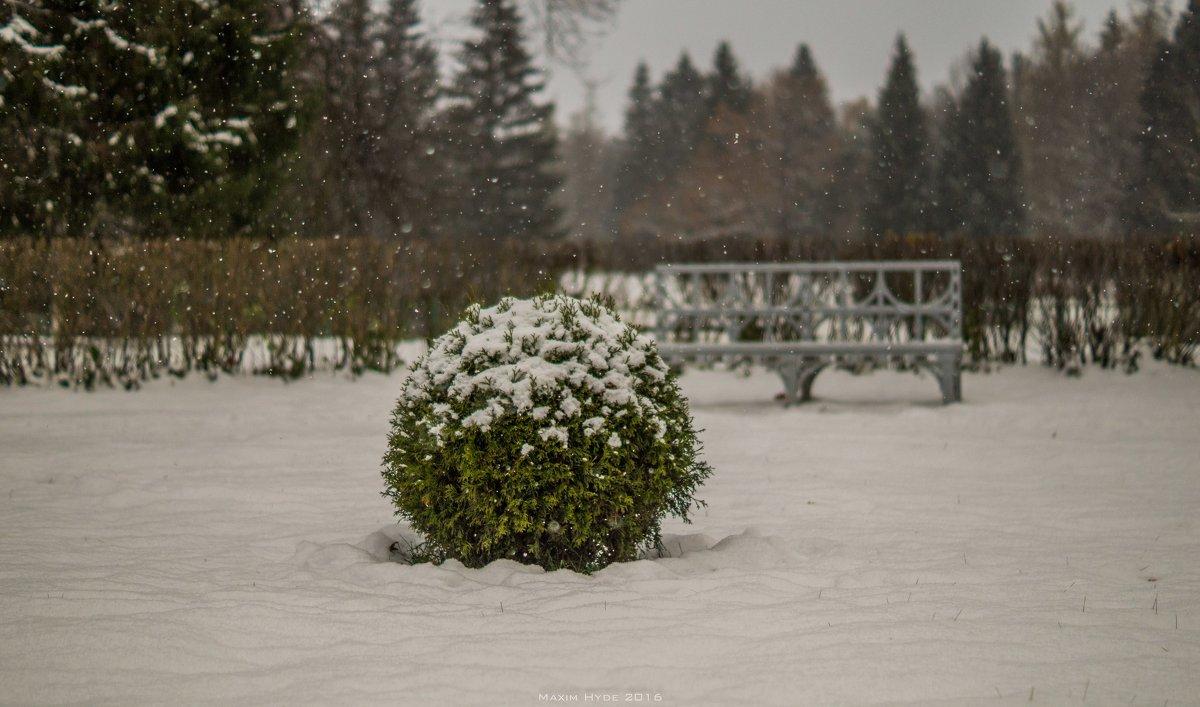 Павловск, первый снег - Max Hyde