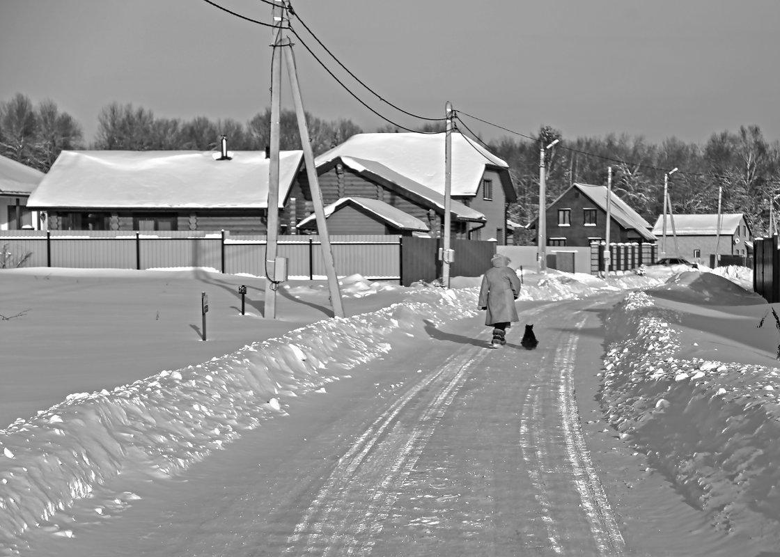 По главной улице с... Фаготом, или Одинокая прогулка в Рождественский сочельник - Alexandr Zykov