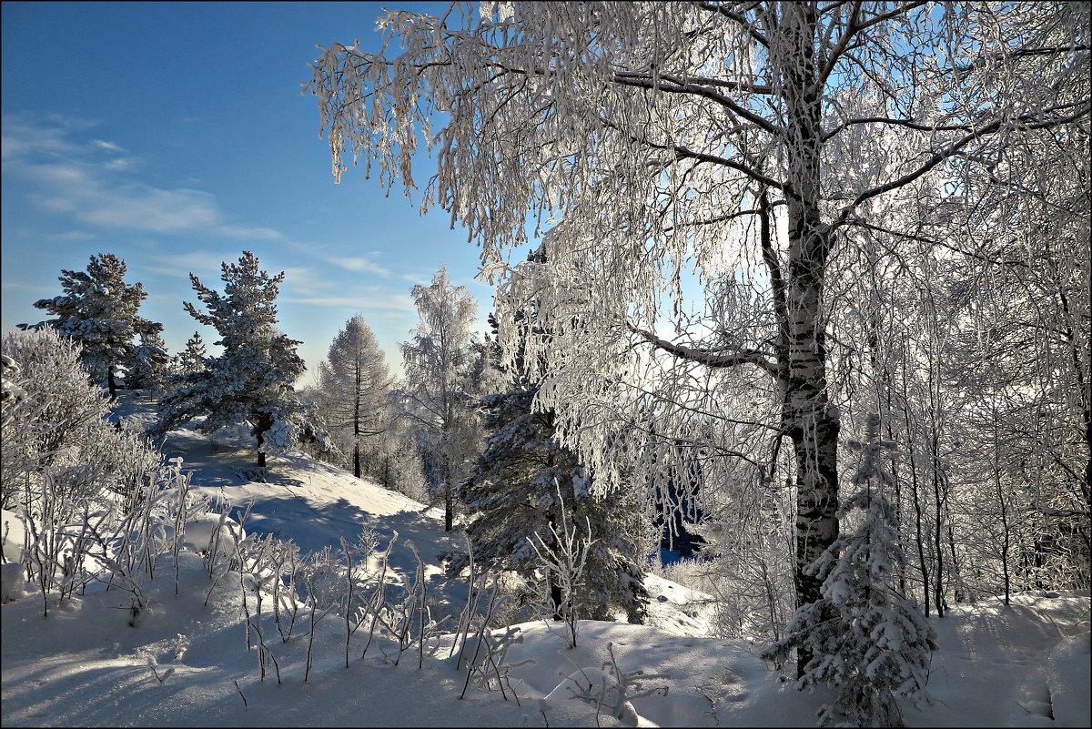 Зимнее - Leonid Rutov