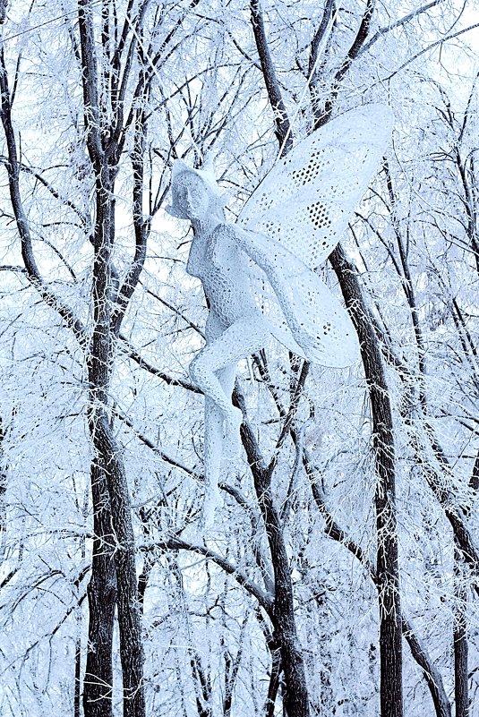Летящая, крылатая - Ирина Сивовол