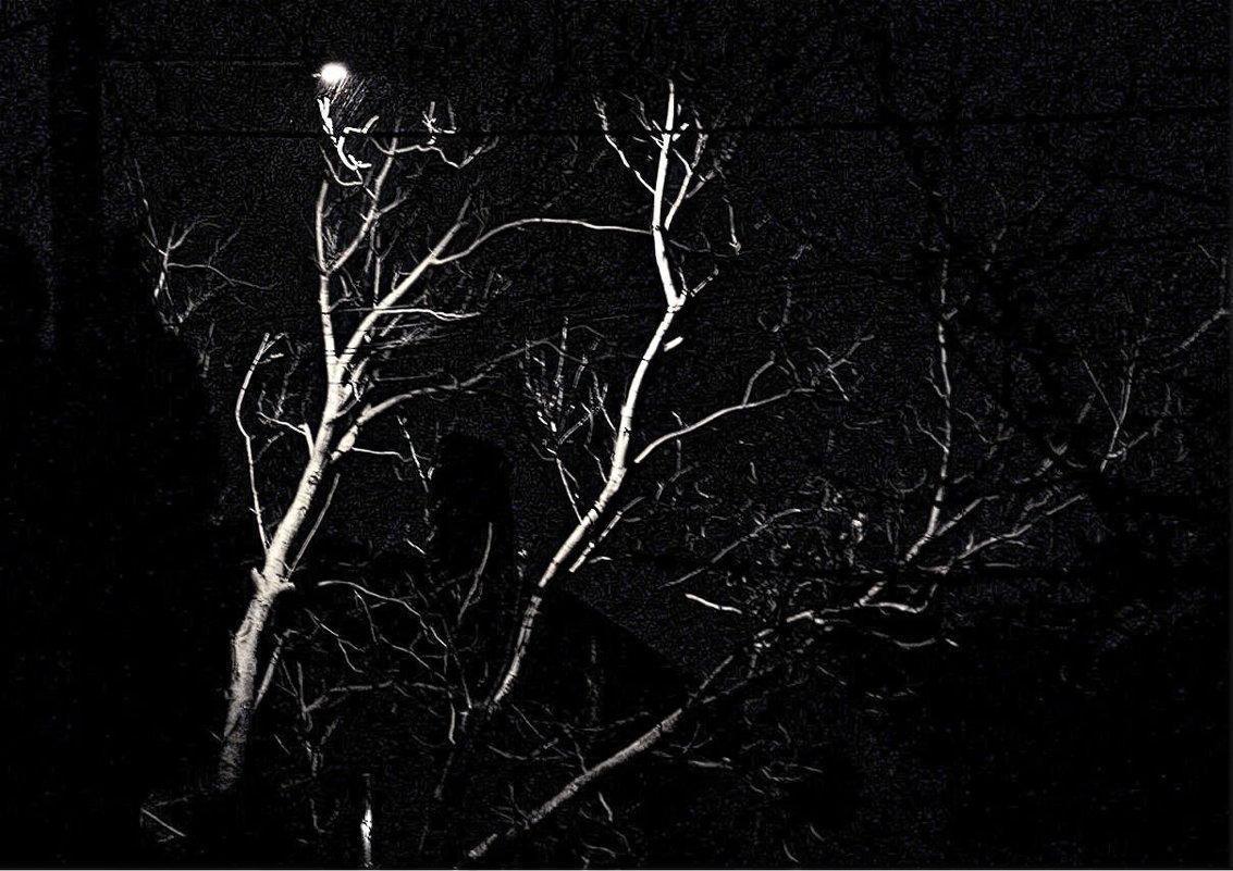 ночь, улица, фонарь... - Александр Корчемный