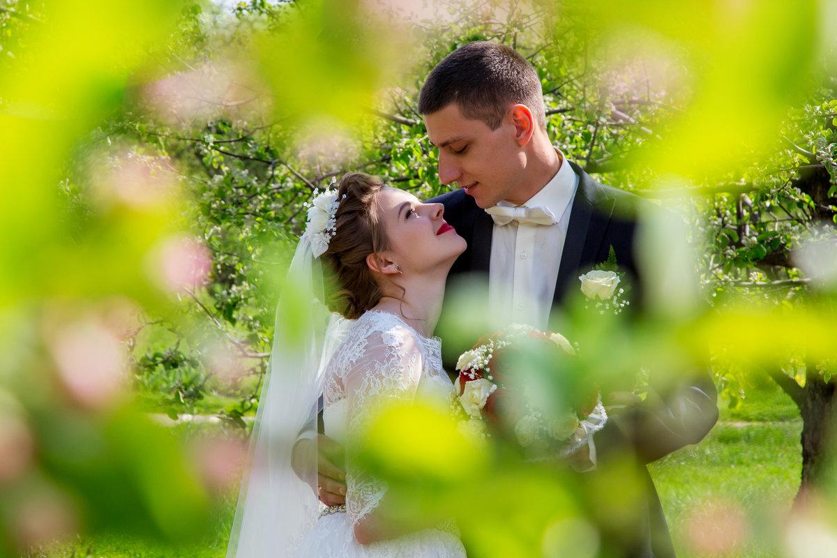 жених и невеста под деревом - Егор Чеботаренко