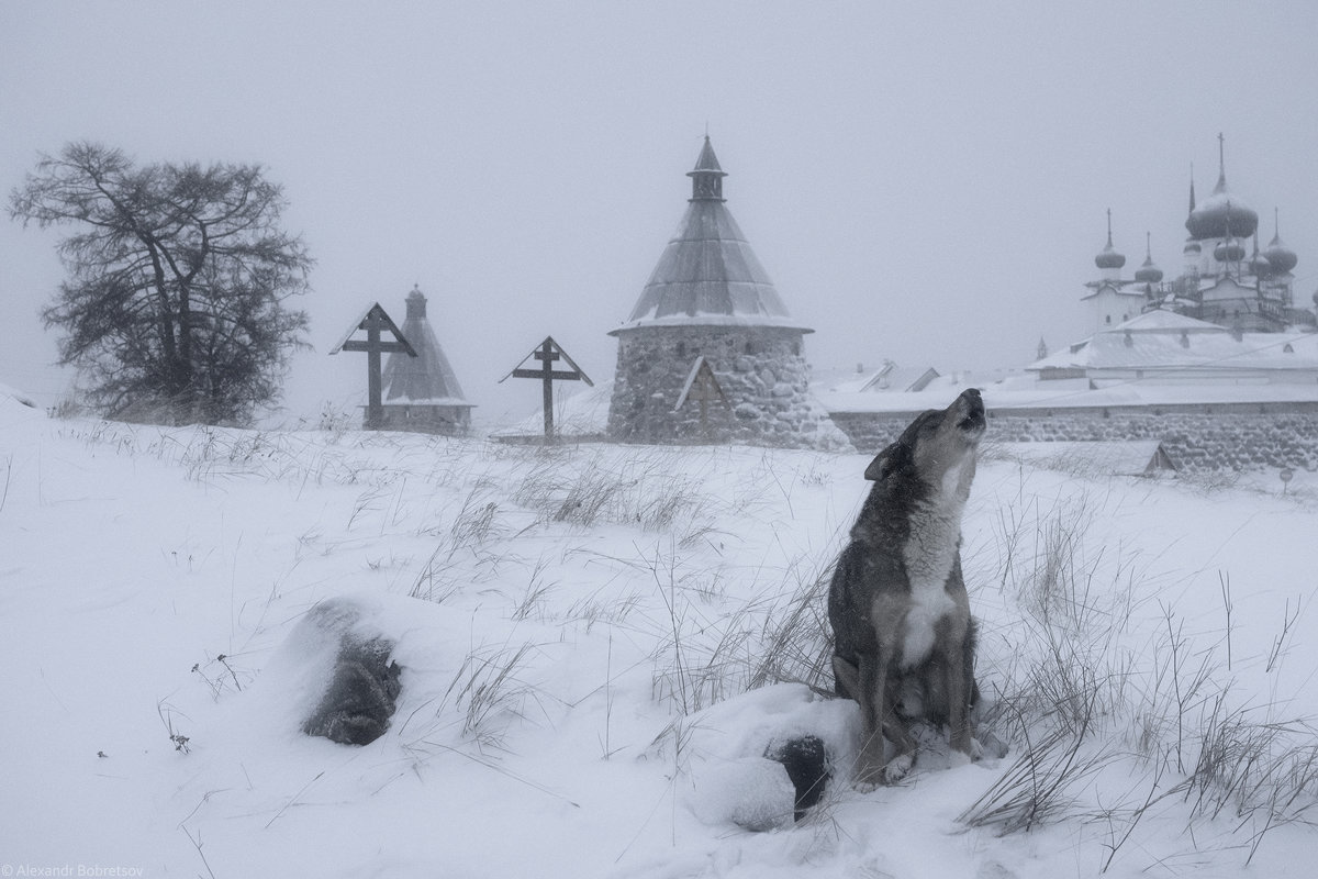 Поминальная молитва - Александр Бобрецов