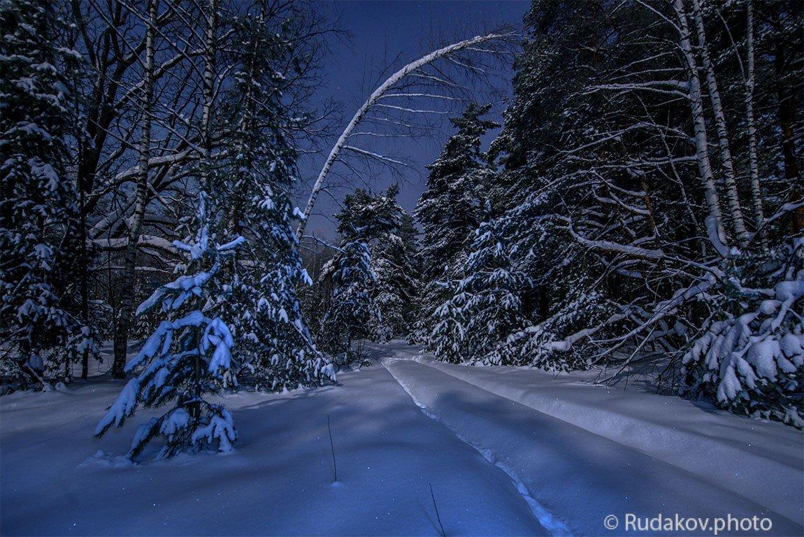 Ночь в сказочном зимнем лесу - Сергей