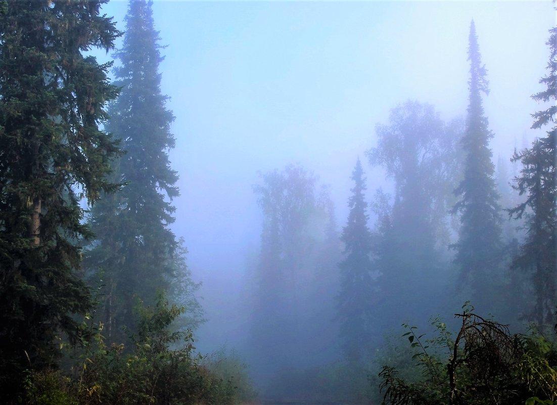 Утро туманное - Сергей Чиняев