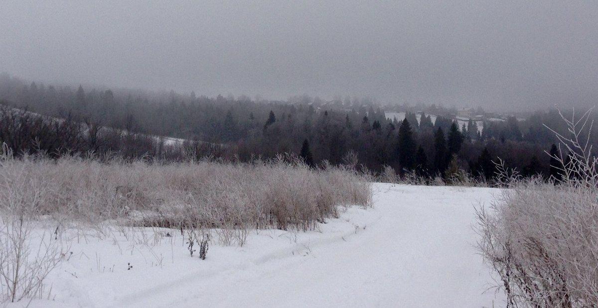 Зима#3 - Liudmila Antonova